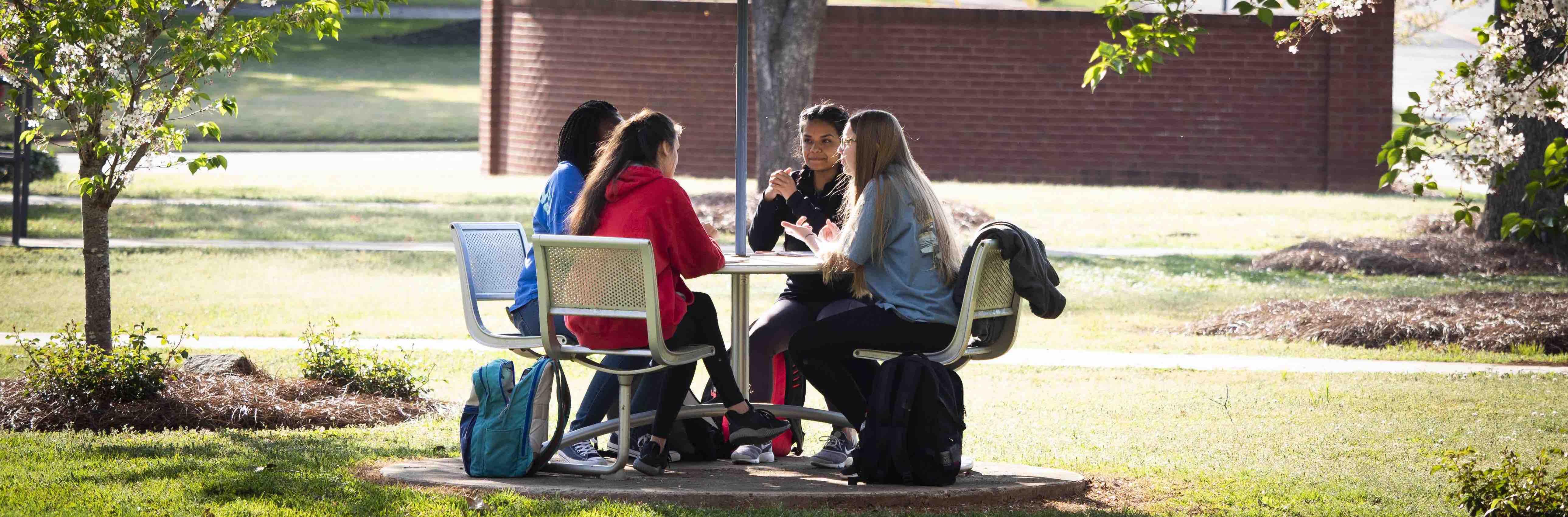 group-meeting-outdoor-table-c.jpg